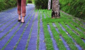 chodzenie w ogrodzie Obrazy Royalty Free