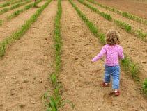 chodzenie w ogrodzie Zdjęcie Royalty Free