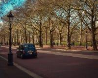 Chodzić drogą z drzewami obraz royalty free
