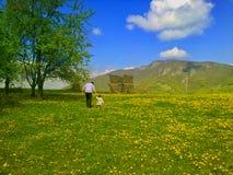 Chodzić w naturze Fotografia Stock