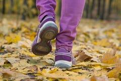 Chodzić w sneakers na żółtych liściach Obrazy Stock