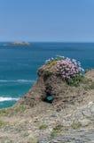 Chodzić wokoło brzegowej ścieżki stepper punkt Cornwall uk Zdjęcia Royalty Free