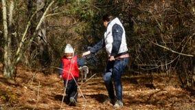 Chodzić z psem w lesie zbiory