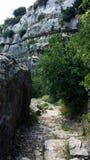 Chodzić dla góry - nago Fotografia Stock