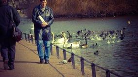 Chodzić jeziorem w St James parku Obrazy Stock