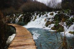 Chodzić przez jeziora w Plitvice jezior parku narodowym Obraz Royalty Free
