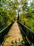 Chodzić przez mosta Obraz Royalty Free