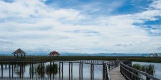 Chodzi sposób w naturze, Khao Sam Roi Yot, Prachuap Khiri Khan, T Fotografia Royalty Free