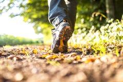 Chodzić w naturze Zdjęcie Royalty Free