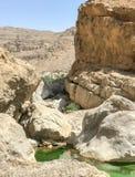 Chodzi wadiego Bani Khalid jeziora w Oman Zdjęcia Stock