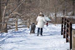 Chodzić z jej psem Fotografia Stock
