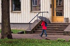 Chodzić z parasolem Fotografia Stock