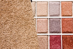 Choice of carpet colors. Colorful plush texture carpet swatch Stock Photography