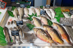 Choice of fish at market Royalty Free Stock Photos