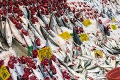Choice of fish at a market Royalty Free Stock Photography