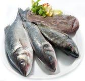 Choice of fresh raw fish. Isolated on white background Stock Photography