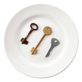 Choice a key for your door. Three different keys on plate isolated on white. Metaphoric choice Stock Photography