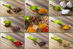 Choice of spices and herbs. Collection of beautiful spices on an antique spoon royalty free stock photo