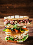 Choice of tasty toasted sandwiches Royalty Free Stock Photography