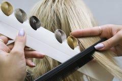 Choice of tone of hair in hair salon stock photos
