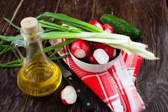 Choicest ingredients for a salad, radishes and green onions. Food Stock Images