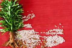 Choinka handmade z sztucznymi liści, cynamonu i tapiok adra, zdjęcie stock