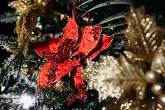 Choinka i Boże Narodzenie dekoracje Obraz Royalty Free