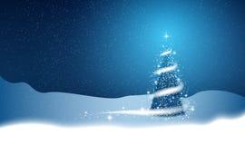 Choinka, miecielica, gwiazdy, śnieg ilustracja wektor