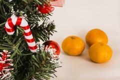 Choinka na białym tle z tangerines Fotografia Stock