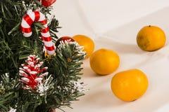 Choinka na białym tle z tangerines Zdjęcia Stock