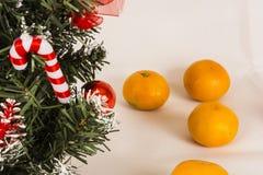 Choinka na białym tle z tangerines Zdjęcie Stock