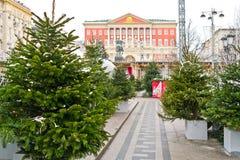 Choinka na Tverskaya kwadracie blisko urzędu miasta Fotografia Royalty Free
