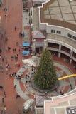 Choinka przy Quincy rynkiem, Boston Zdjęcie Royalty Free