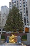 Choinka przy Rockefeller centrum Fotografia Stock