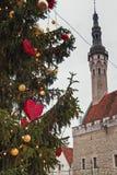 Choinka przy urzędu miasta kwadratem w Tallinn Fotografia Royalty Free