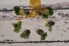 Choinka rożki z gałąź na backgrou i ornamenty fotografia stock