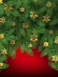 Choinka rozgałęzia się na czerwonym tle 10 eps ilustracja wektor