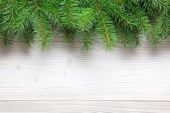 Choinka rozgałęzia się na drewnianym tle Obrazy Royalty Free