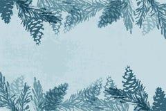 Choinka szyszkowego obrazu zimy wektorowe tekstury zdjęcie stock