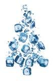 Choinka tworzy kostki lodu Obraz Royalty Free