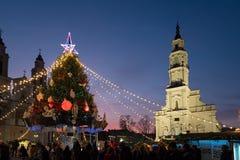 Choinka w Kaunas urzędu miasta kwadrata nocy scenie Obrazy Royalty Free
