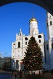Choinka w Moskwa Kremlin Obraz Royalty Free