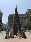 Choinka w Santiago Chile Fotografia Royalty Free