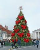 Choinka w urzędu miasta kwadracie dekoruje z czerwonym łękiem Zdjęcia Stock
