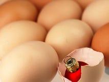 Choinki bauble komes od łamanego jajka Zdjęcia Royalty Free