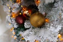 Choinki dekoracja na zamazanym tle Zima nastrój Fotografia Royalty Free