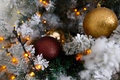 Choinki dekoracja na zamazanym tle Zima nastrój Zdjęcia Royalty Free