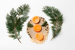 Choinki gałąź, mandarynka, nowy rok dekoracja na bielu Kreatywnie pojęcie, przestrzeń dla teksta, logo Mieszkanie nieatutowy Zdjęcia Stock