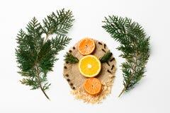 Choinki gałąź, pomarańcze, mandarynka, nowy rok dekoracja na bielu Kreatywnie pojęcie, przestrzeń dla teksta, logo Obraz Royalty Free