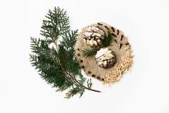 Choinki gałąź, tort, nowy rok dekoracja na bielu Kreatywnie pojęcie, przestrzeń dla teksta, logo Mieszkanie nieatutowy Obraz Royalty Free